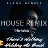 Shawn mendes-There's is nothing holding me back house remix