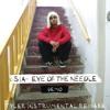Sia - Eye Of The Needle (Demo) [Tyler Instrumental Remake]