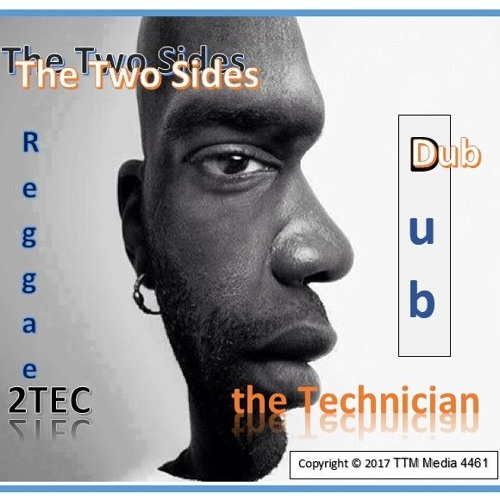 The Two Sides (2TEC & the Technician)