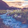 Diamond and Pearl Route 209 [Lo-fi Remix]