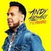 Andy Alemany - Fluye Portada del disco