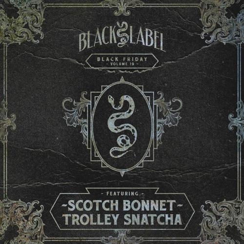 Scotch Bonnet