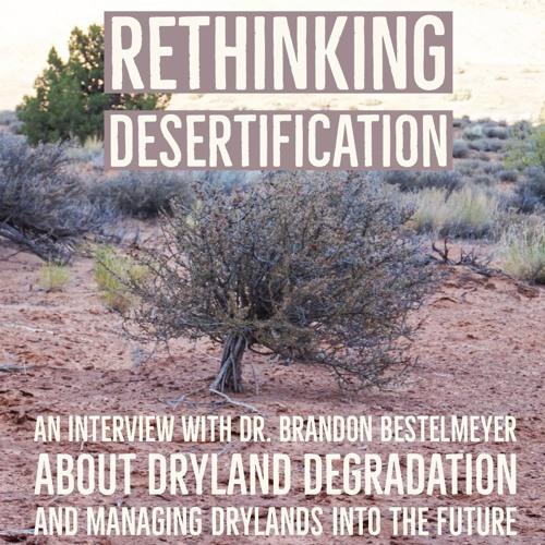 Rethinking desertification