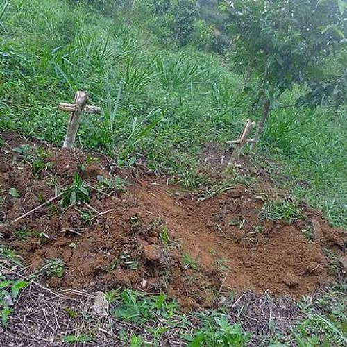 Casal de agricultores no Pará encontram covas com cruzes em lote onde moram