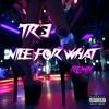 Tr3-Nice For What (Drake Remix)