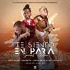 Ceky Viciny Ft Secreto El Biberon Lirico & Bulin 47 – Te Siento En Para (Especial Edition)