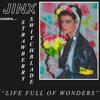 Life Full Of Wonders