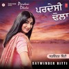 Akkhan Meech Ke - Dj Harpreet ft Satwinder Bitti