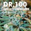 Dr. 100 - Night Creature