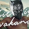Azerrz - This Is Wakanda ( This Is America Black Panther Parody)