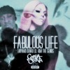 Fabulous Life ( Feat Lil Kim & The Genius )