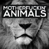 Martin Garrix Animals 1hour version