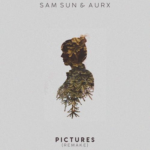 Sam Sun & Aurx - Pictures (1.0)