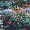 Download SZA - Garden (Say It Like That)(EME Cover) Mp3