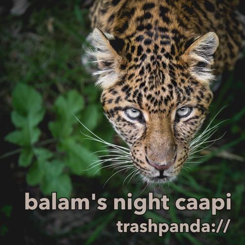 Balam's Night Caapi [Live] @ Hermosa Grove