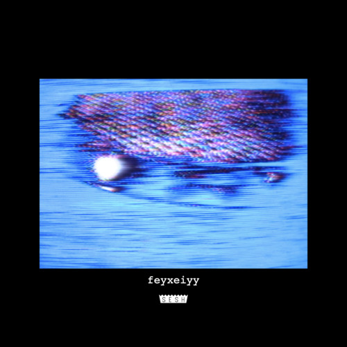 feyxeiyy [album] ft. cat soup