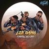 L2B Gang - Qui Nous L'empêche