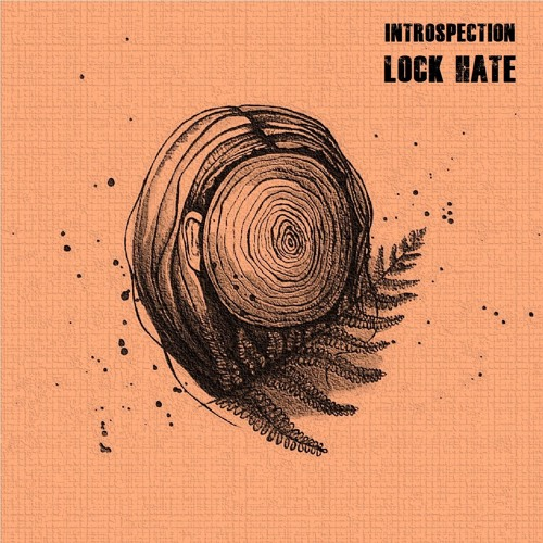 NR011 - Lock Hate - Introspection