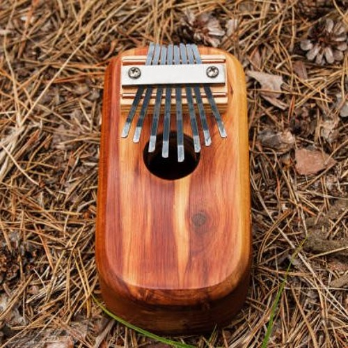 Can't Help Falling In Love ( Kalimba Cover )