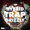 Hybrid Trap Grizzly   530+ Drums, FX, Serum Presets, Melody Loops & More!