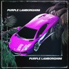 Skrillex & Rick Ross - Purple Lamborghini (Part Native remix)