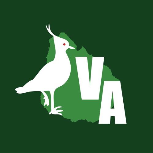 Vigilancia Ambiental - Mirada Interior Salto - Radio Uruguay