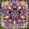 01 - Sonic Species Feat. Djane Gaby - Light Earth Code