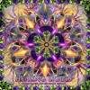 06 - Jakaan - Vibrations