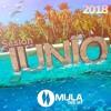 Sesion Junio 2018 Mula Deejay (Sin Cortes)