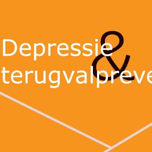 Begeleid afbouwen van antidepressiva