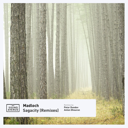 PREMIERE: Madloch - Nordic Noir (Petar Dundov Remix) [Sound Avenue]