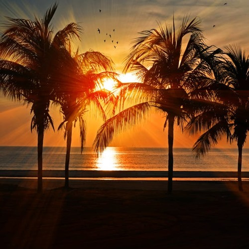 Sun Goes Down(Original Mix) - Tropical House[Free Download