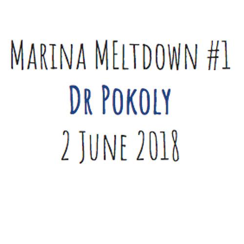 Marina Meltdown #1 mixed by Dr Pokoly