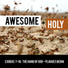 Mike Carter: Awesome & Holy – The Hand of God
