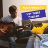 Hey There Delilah - Plain White T's (acoustic cover)