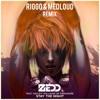 Zedd & Hayley Williams - Stay The Night (RIGGO & Medloud Remix)