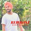 Red Rose By Sukh Sandhu