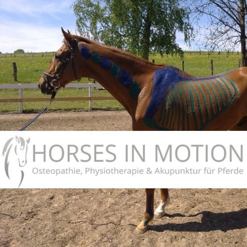 Episode#1 Physiotherapie für Pferde