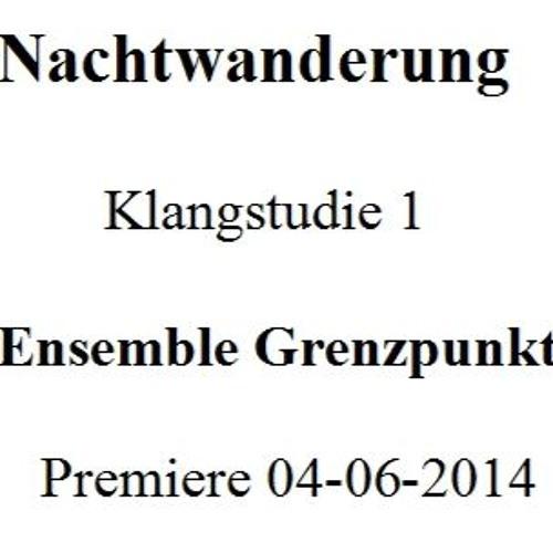 Klangstudie 1- Nachtwanderung - Premiere 04-06-2014- Ensemble Grenzpunkt