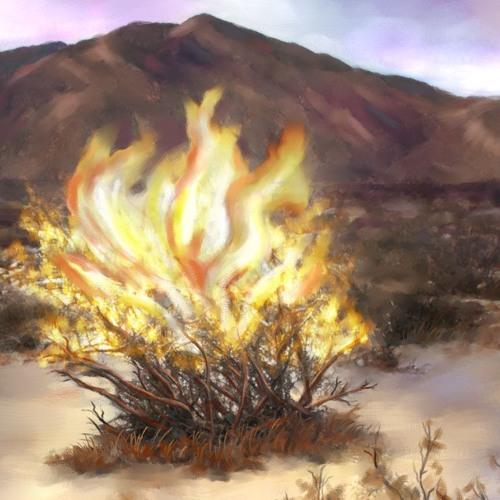 Burning Questions, Burning Bush (Season 1, Episode 18a)