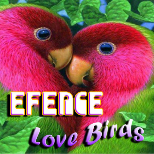 Efence - Love Birds