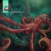 KOLT - Octopus (Eatbrain059)