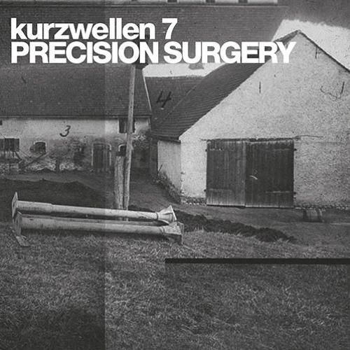 PRECISION SURGERY - HINTERKAIFECK