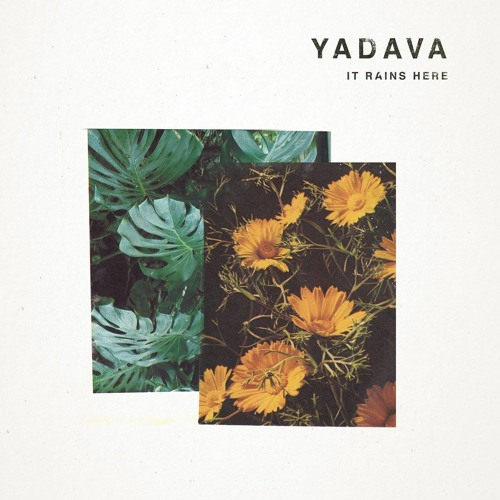 Premiere: Yadava 'Rebecca's Jam'