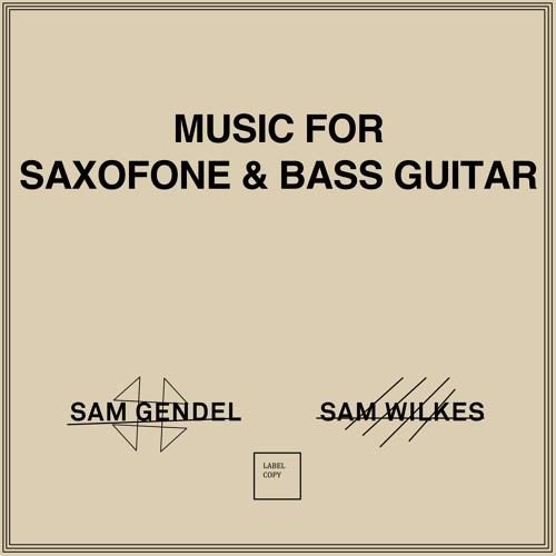Sam Gendel & Sam Wilkes - Music for Saxofone and Bass Guitar