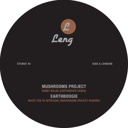 Mushrooms Project - Dubby Bolas (Earthboogie Remix)