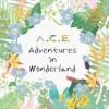 A.C.E (에이스) - Take Me Higher