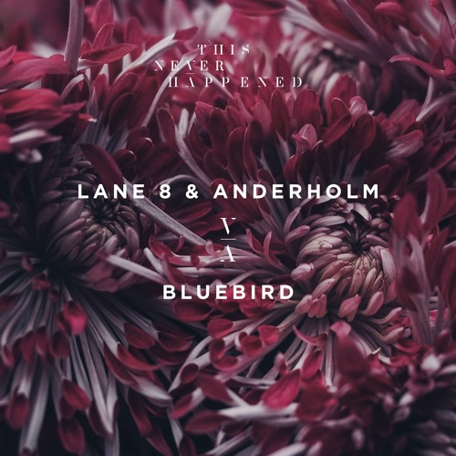 Lane 8 & Anderholm - Bluebird