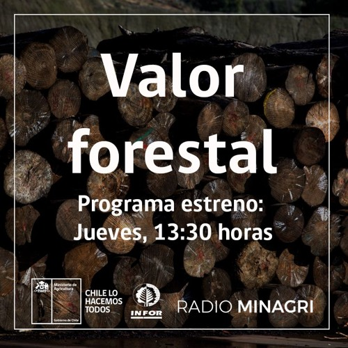 Valor forestal (INFOR)