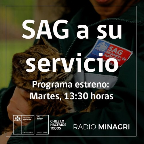 SAG a su servicio (SAG)